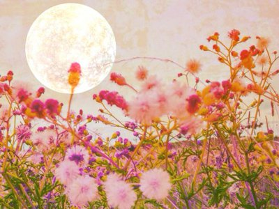 Your Weekly Horoscope for September 4-10: The Pisces Full Moon Brings Closer Connections
